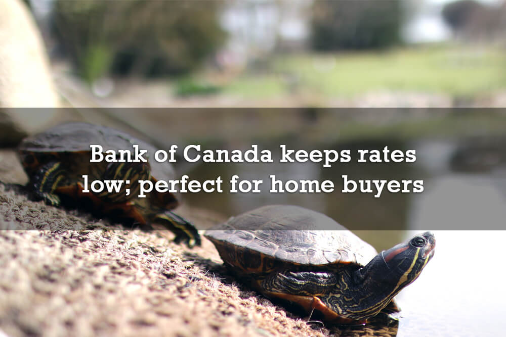 Bank of Canada keeps rates low; still perfect for home buyers