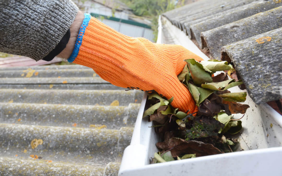 Why every homeowner must clean their eavestroughs this autumn